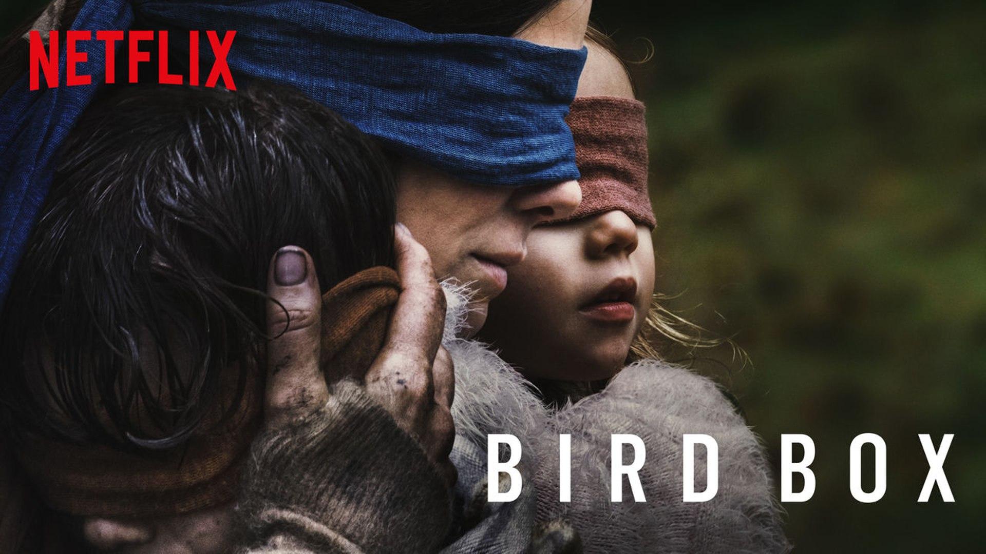 Kritik: Bird Box